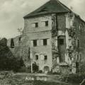 Borow Polski-zamek