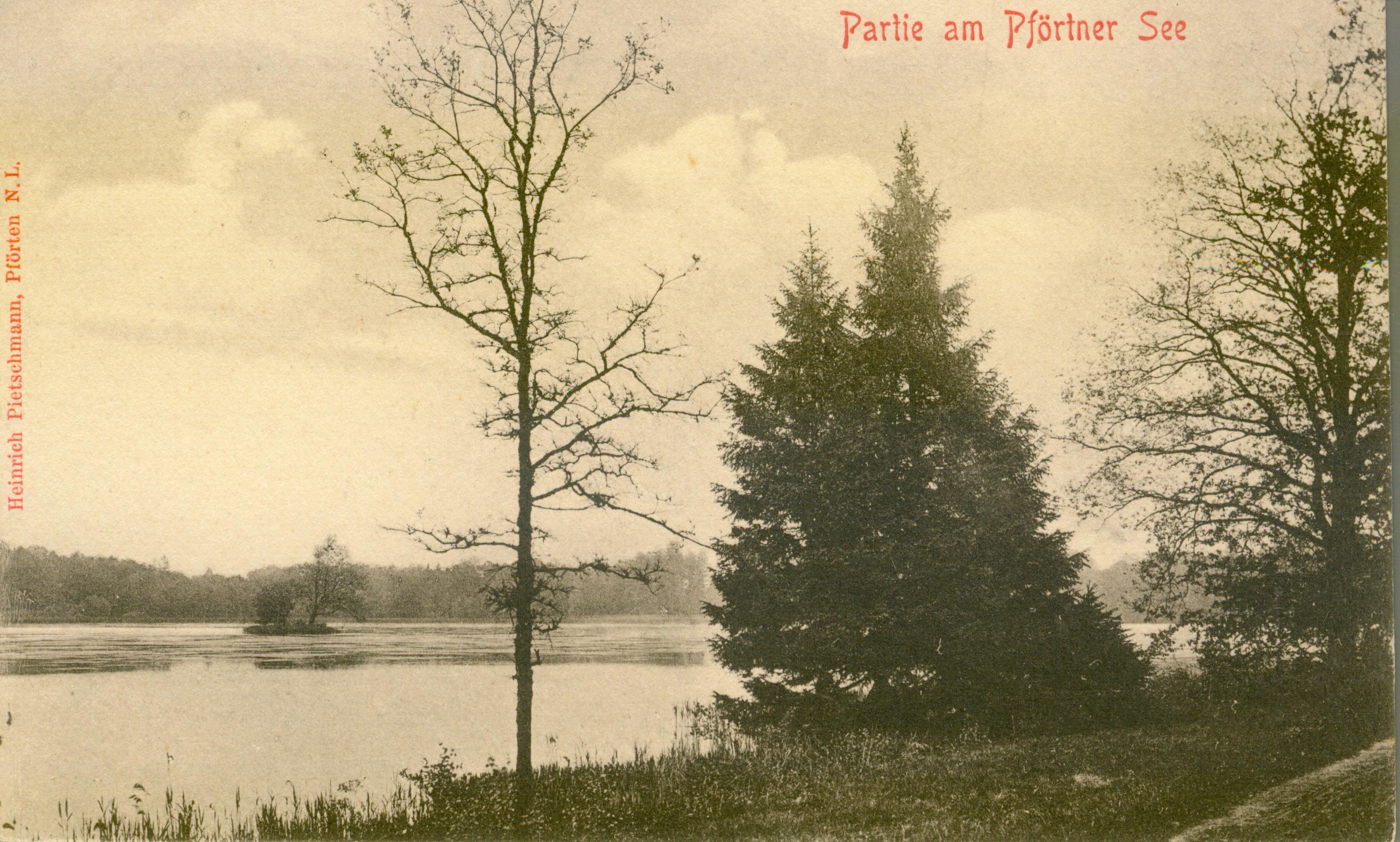 Brody-część jeziora i parku, lubuskie