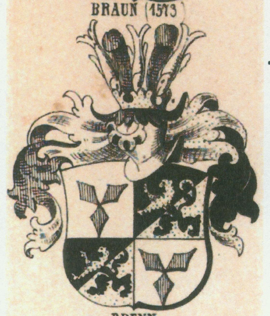 Braun 1573 (2)