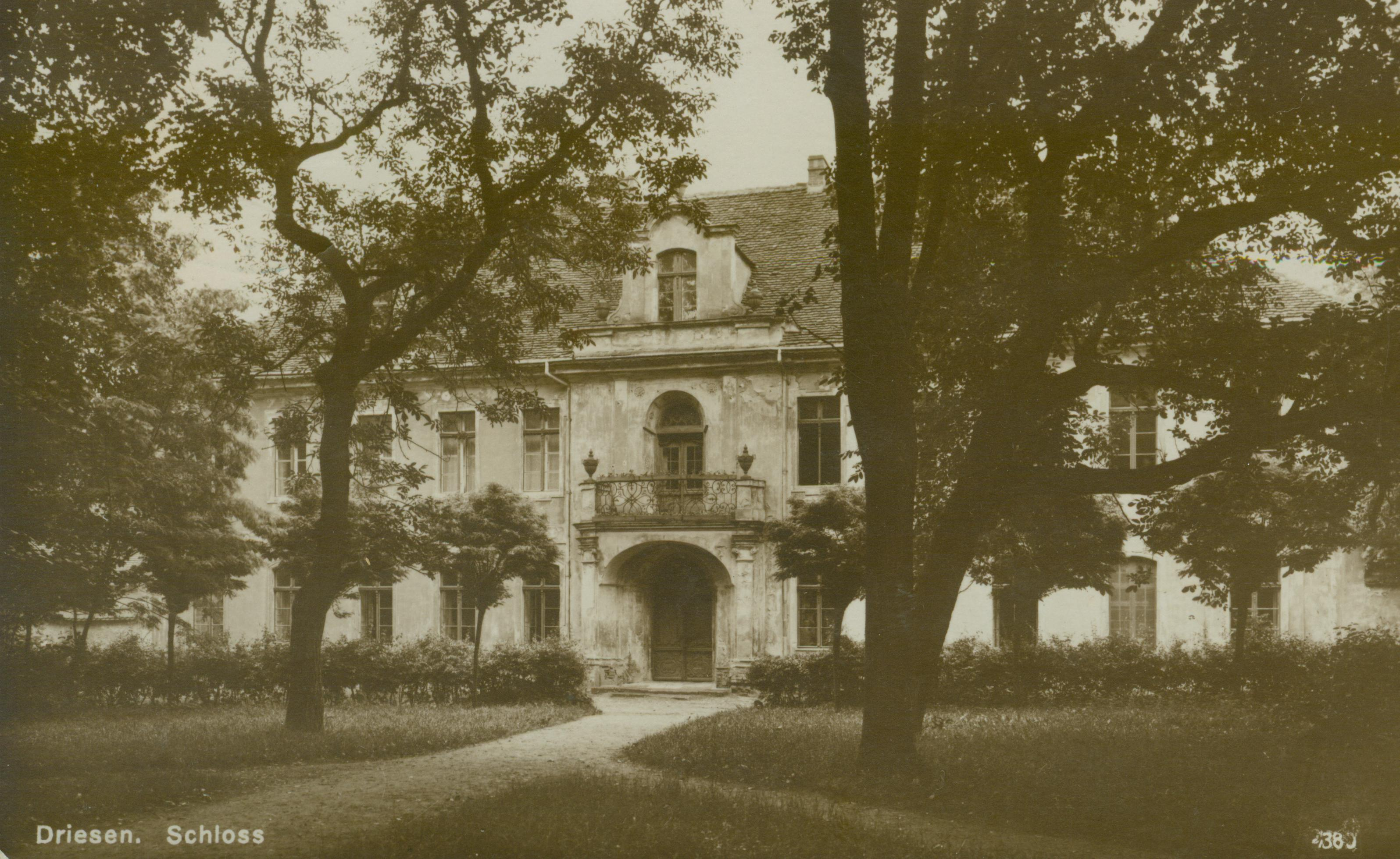 Drezdenko- pałac w sepii