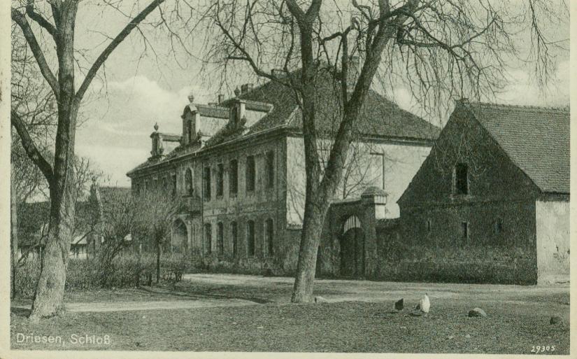 Drezdenko-pałac