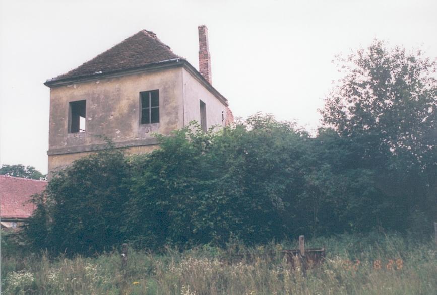gajec-k-rzepina