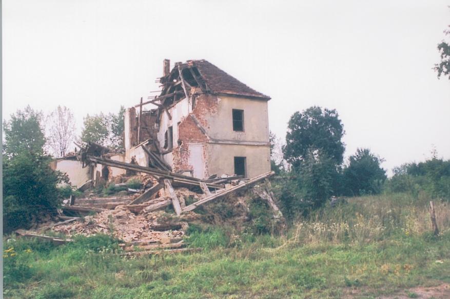 gajec-k-rzepina1