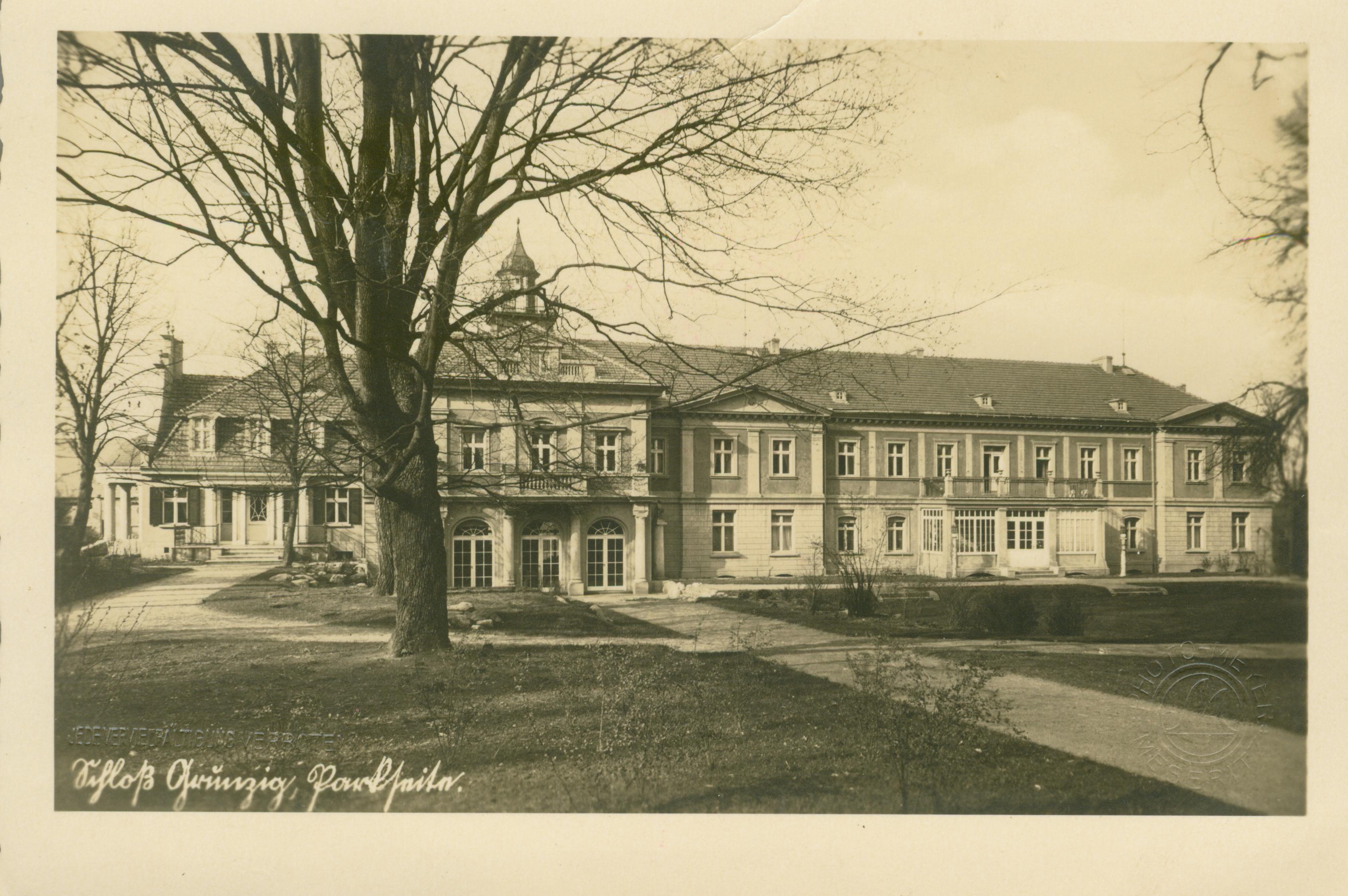 Goruńsko - pałac od strony parku