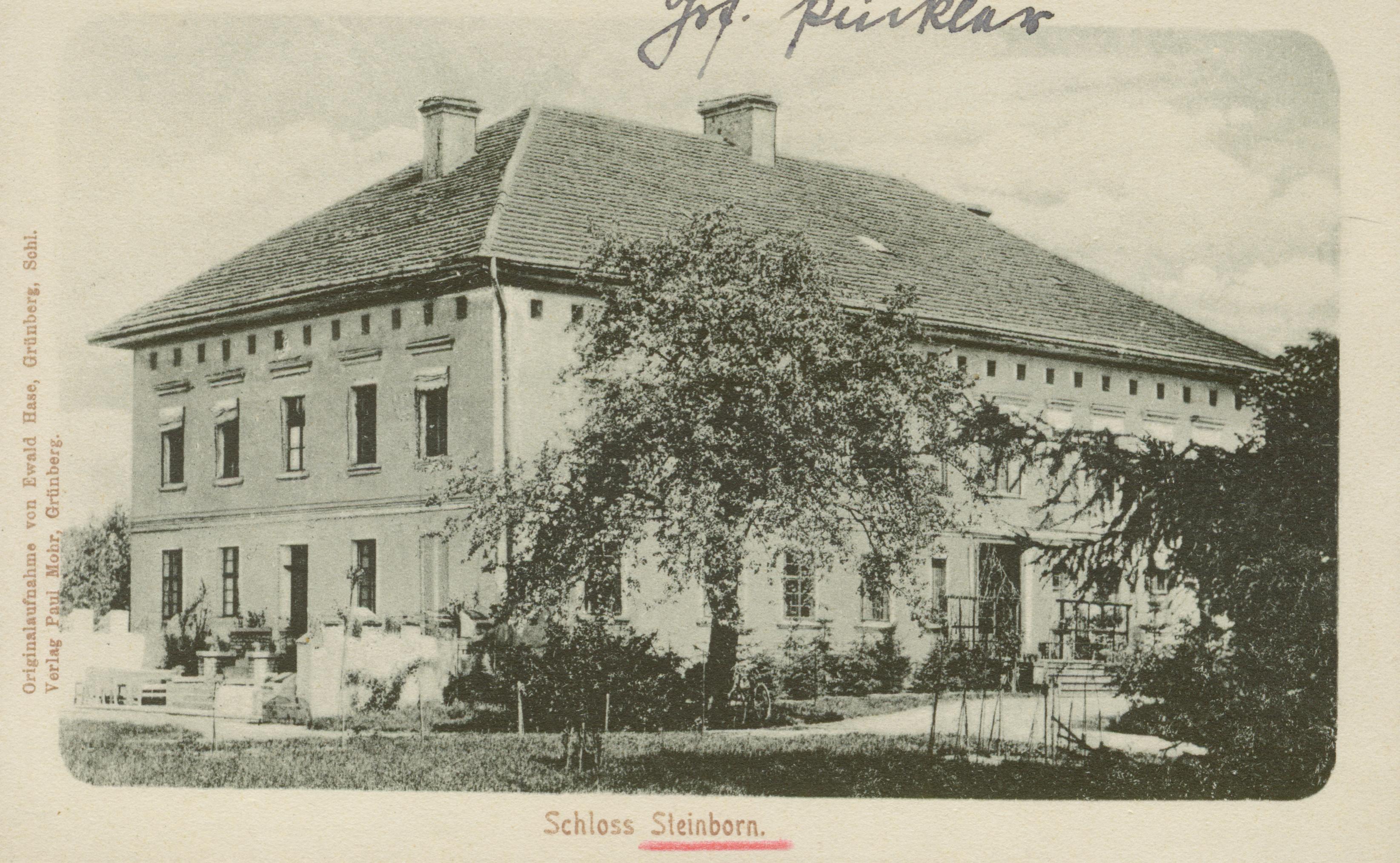 Kamionka-ok. Kożuchowa, pałac Pucklera