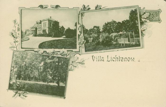 Lichen- willa