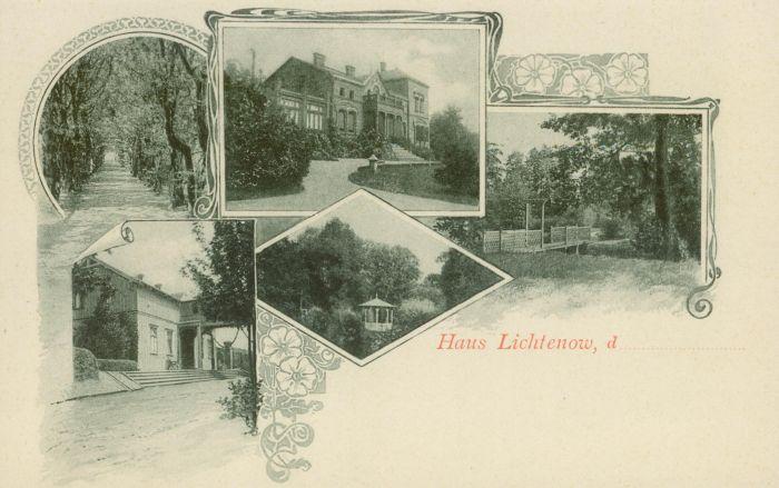 Lichen- willa002