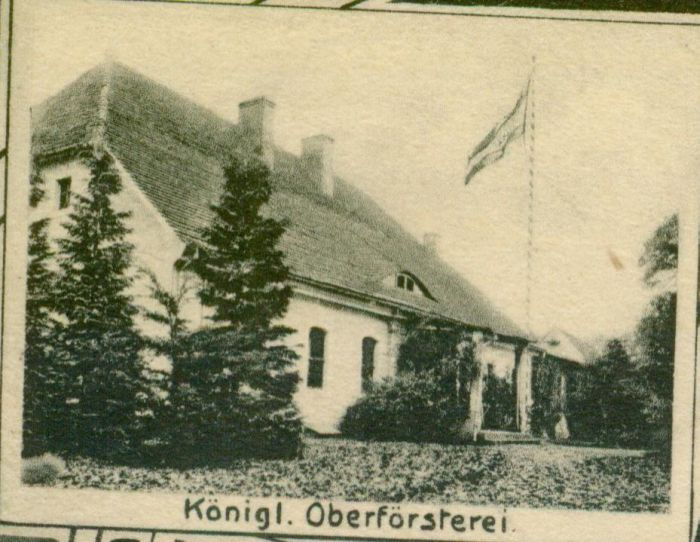 Mosina-lesniczowka na fundamentach zameczku mysliwskiego