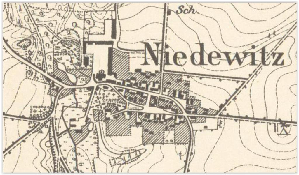 niedzwiedz-1911-lubuskie