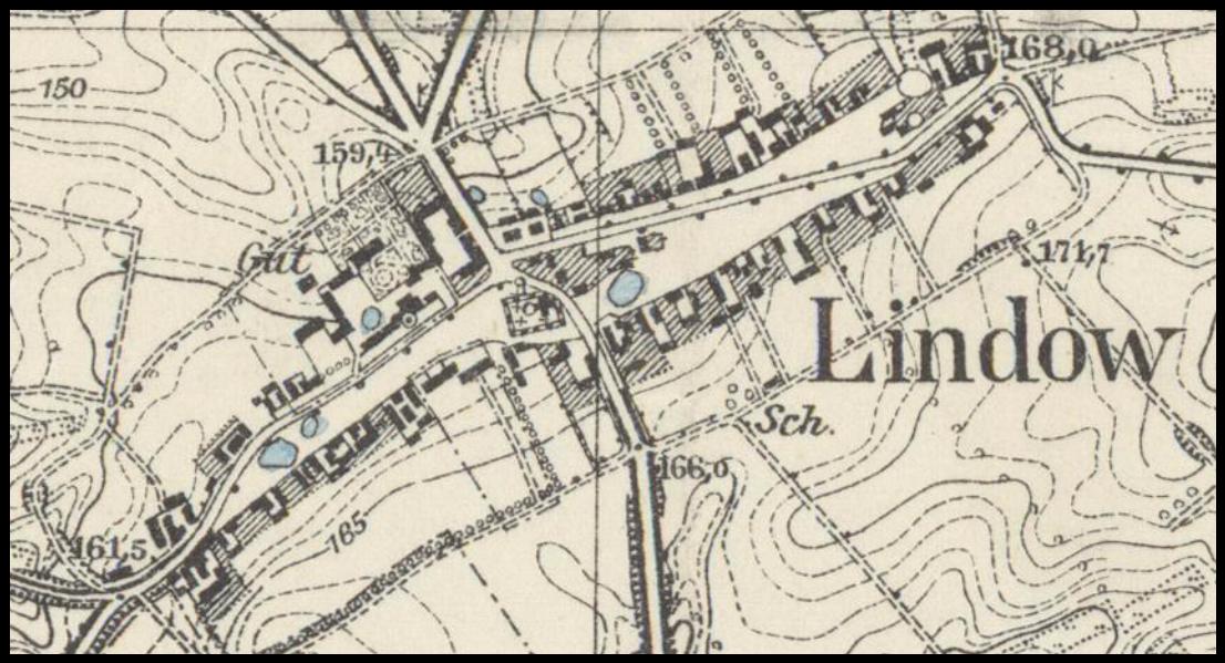 lipa-1929-lubuskie