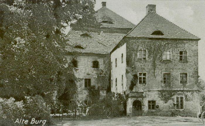 Zimna Brzeźnica- stary pałac