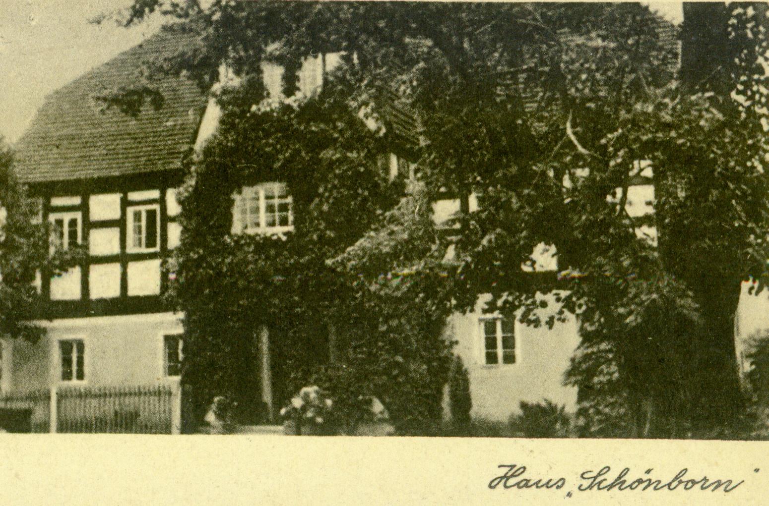 Suchleb- dom Schonborn