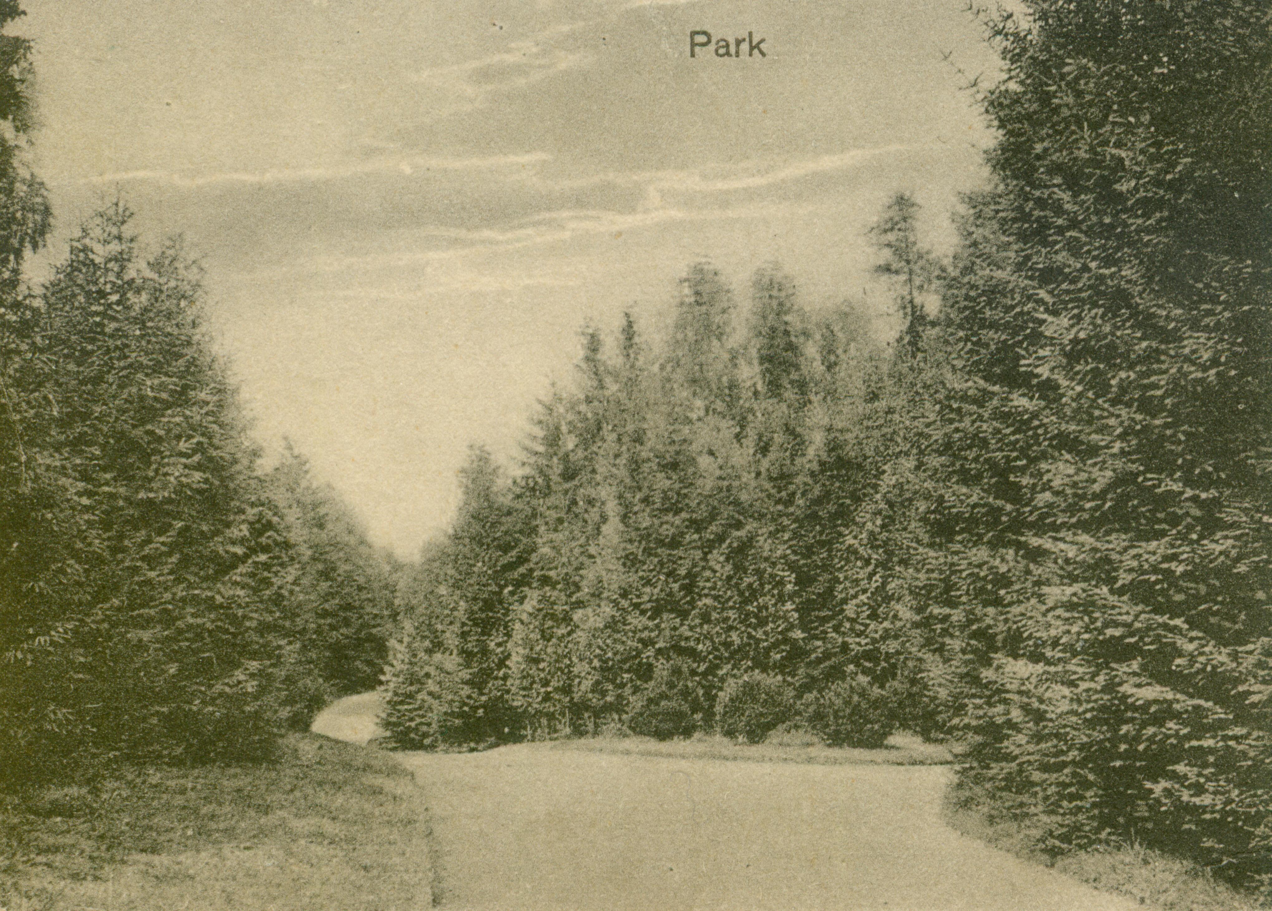 Łagiewniki park