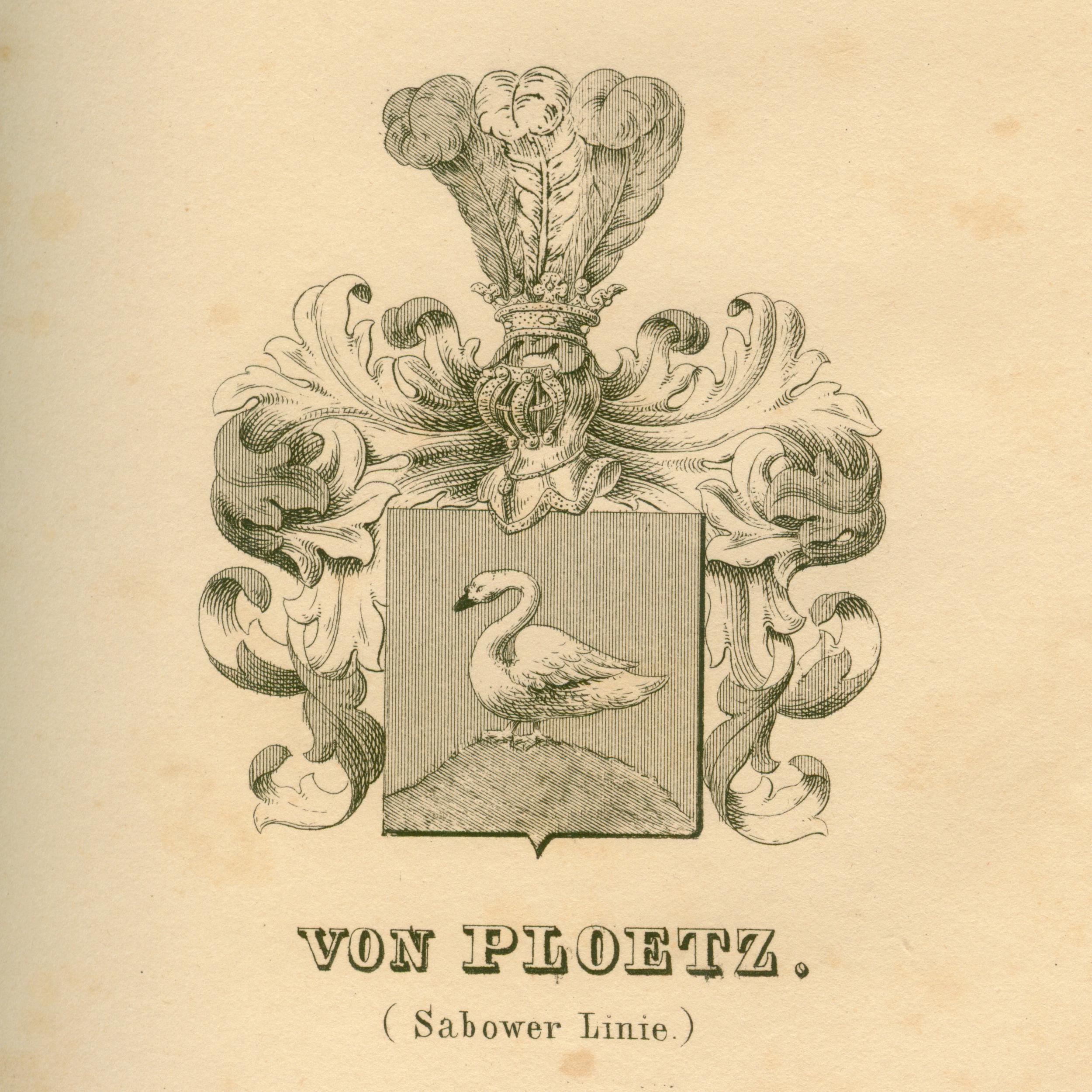 Ploetz 2