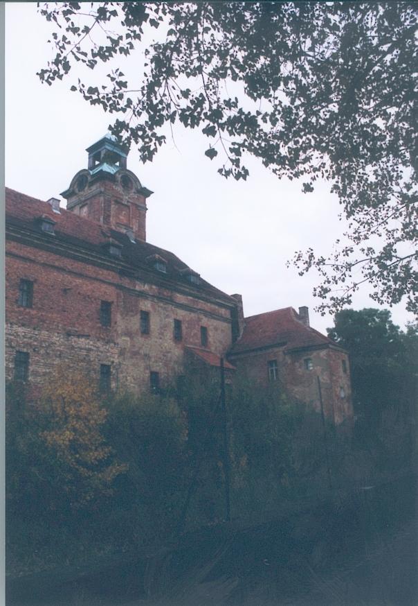 Żary4