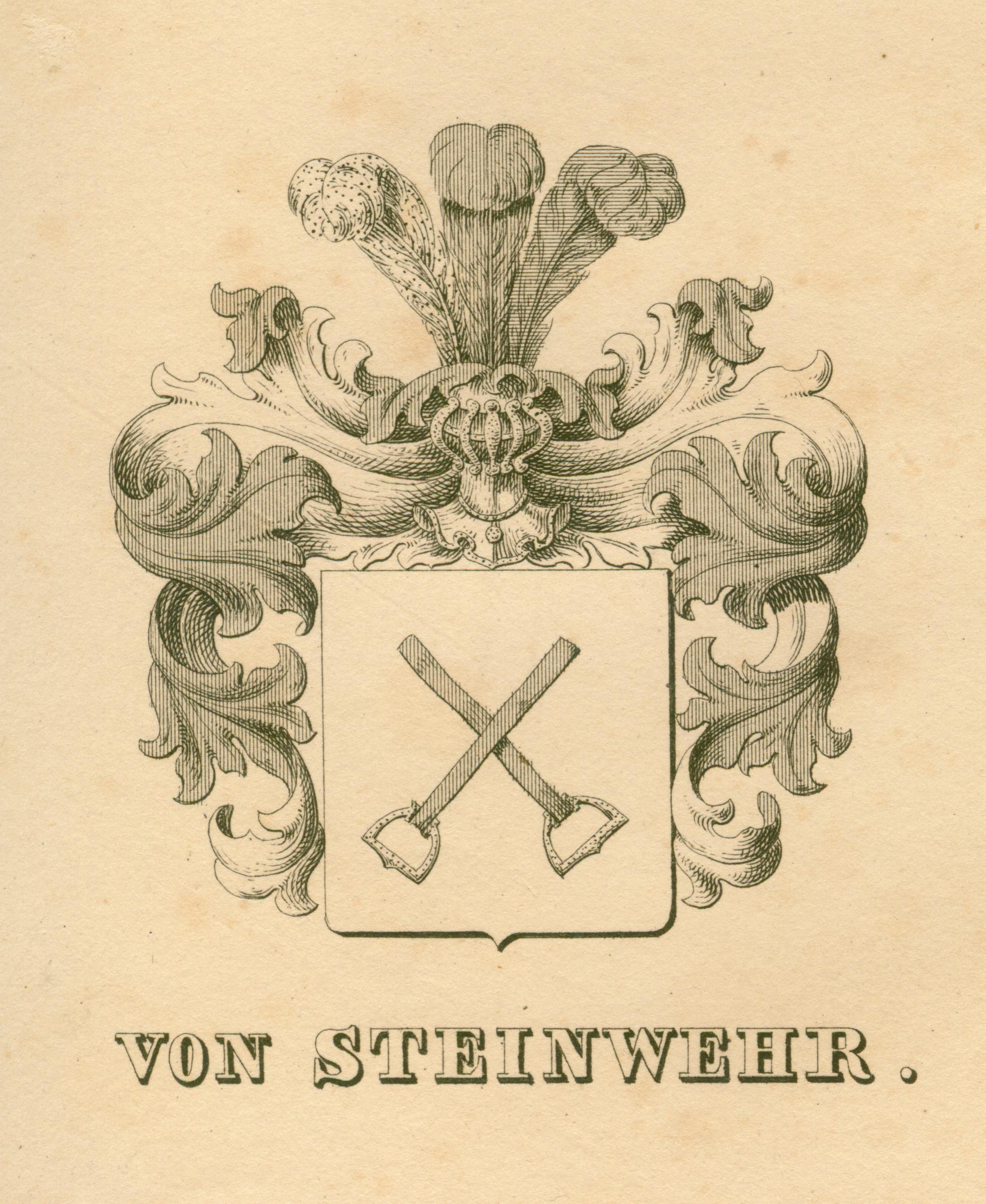 Steinwehr 1