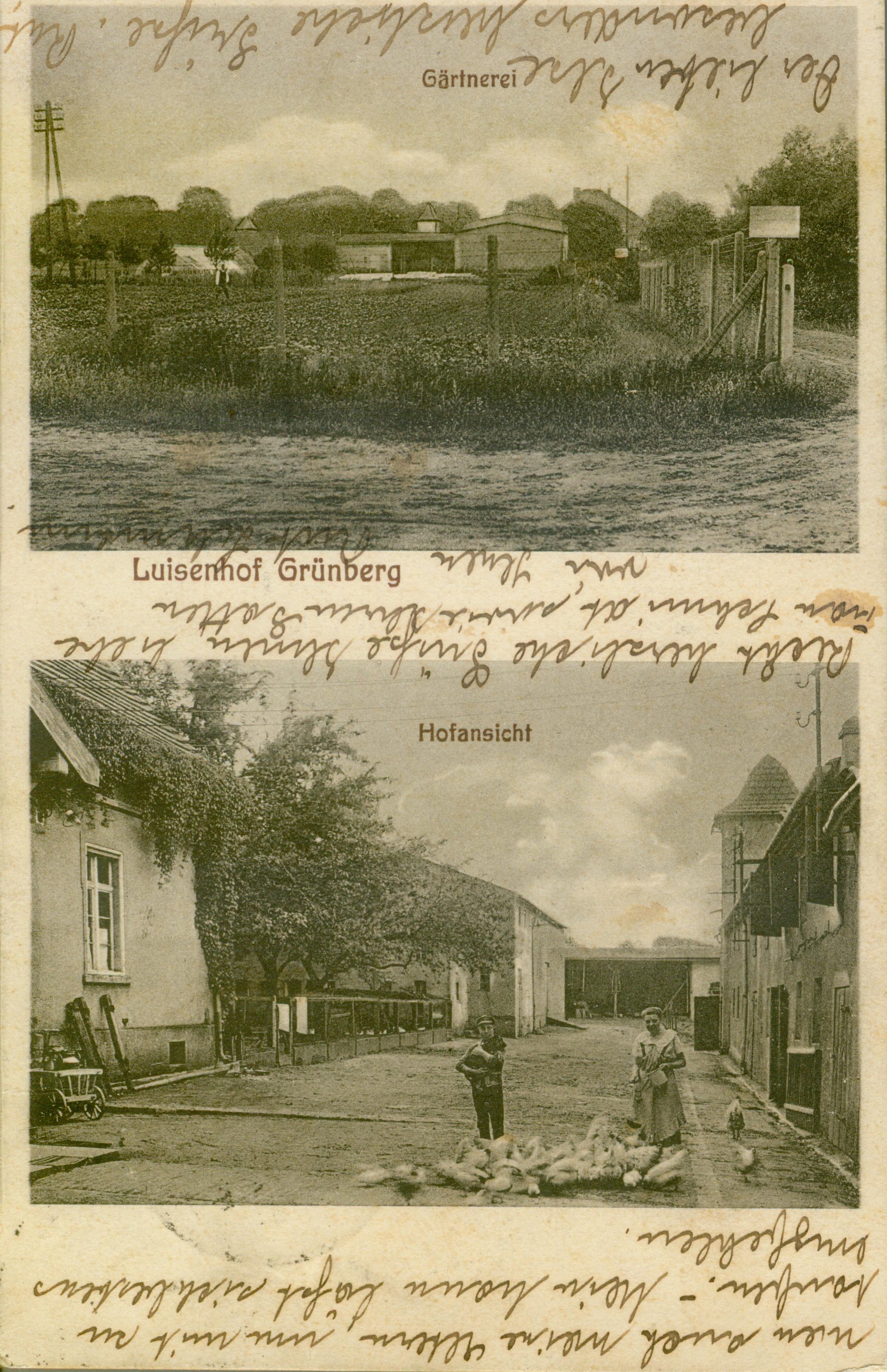Luisenhof Zielona Góra, lubuskie