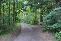 droga dojazdowa na tereny byłego folwarku