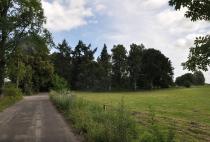 Resztki parku dworskiego