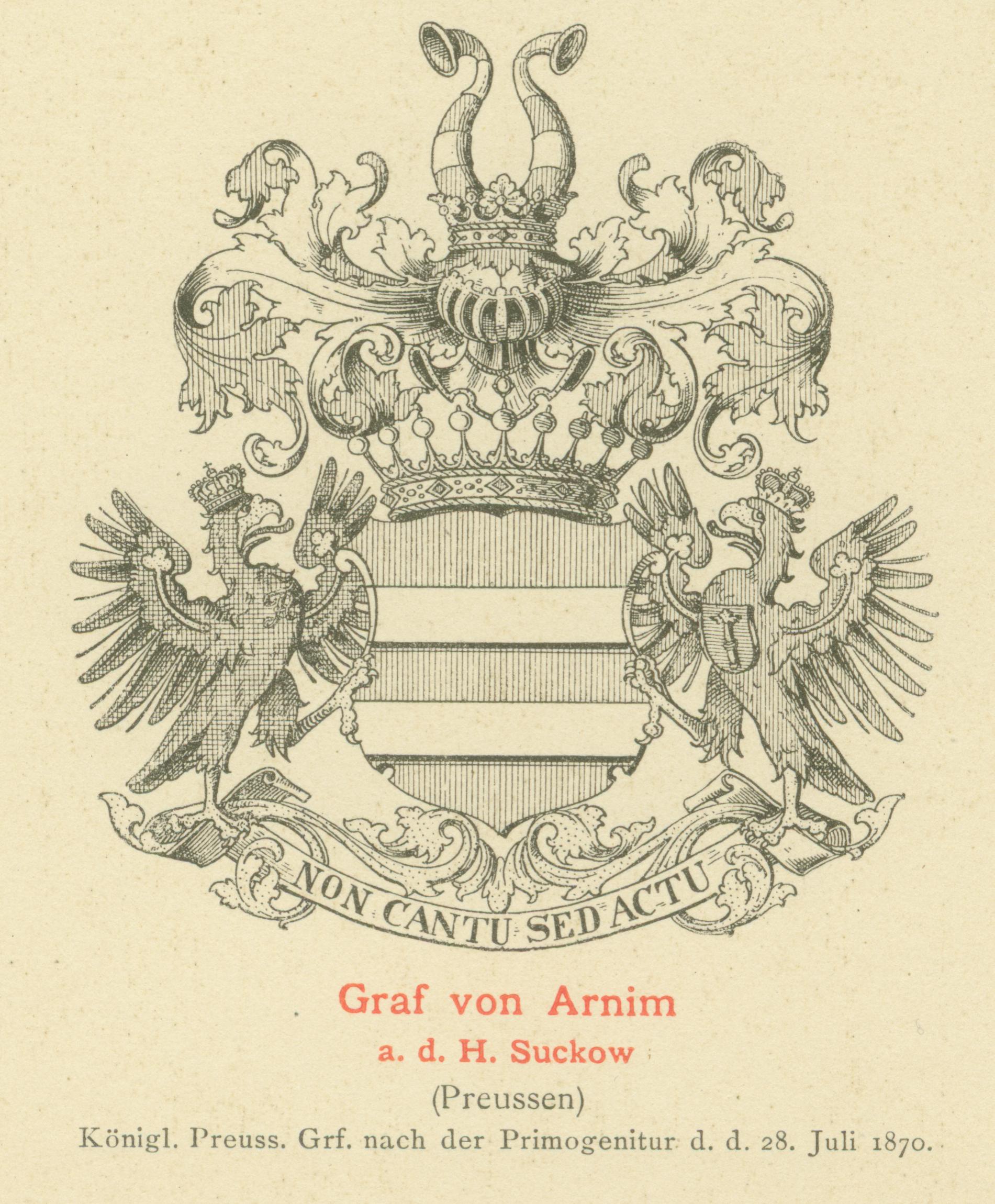 Arnim3