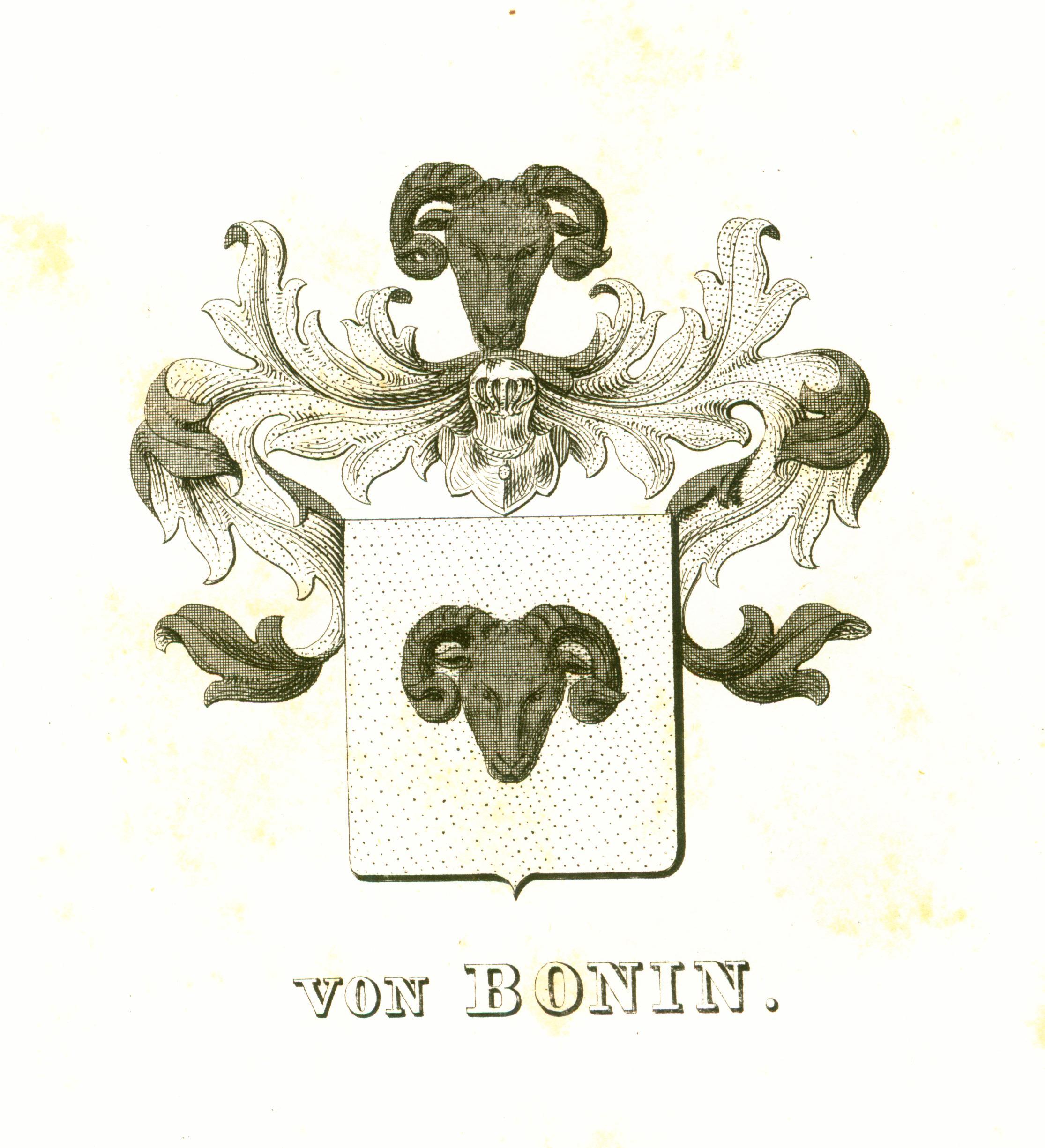 Bonin 2