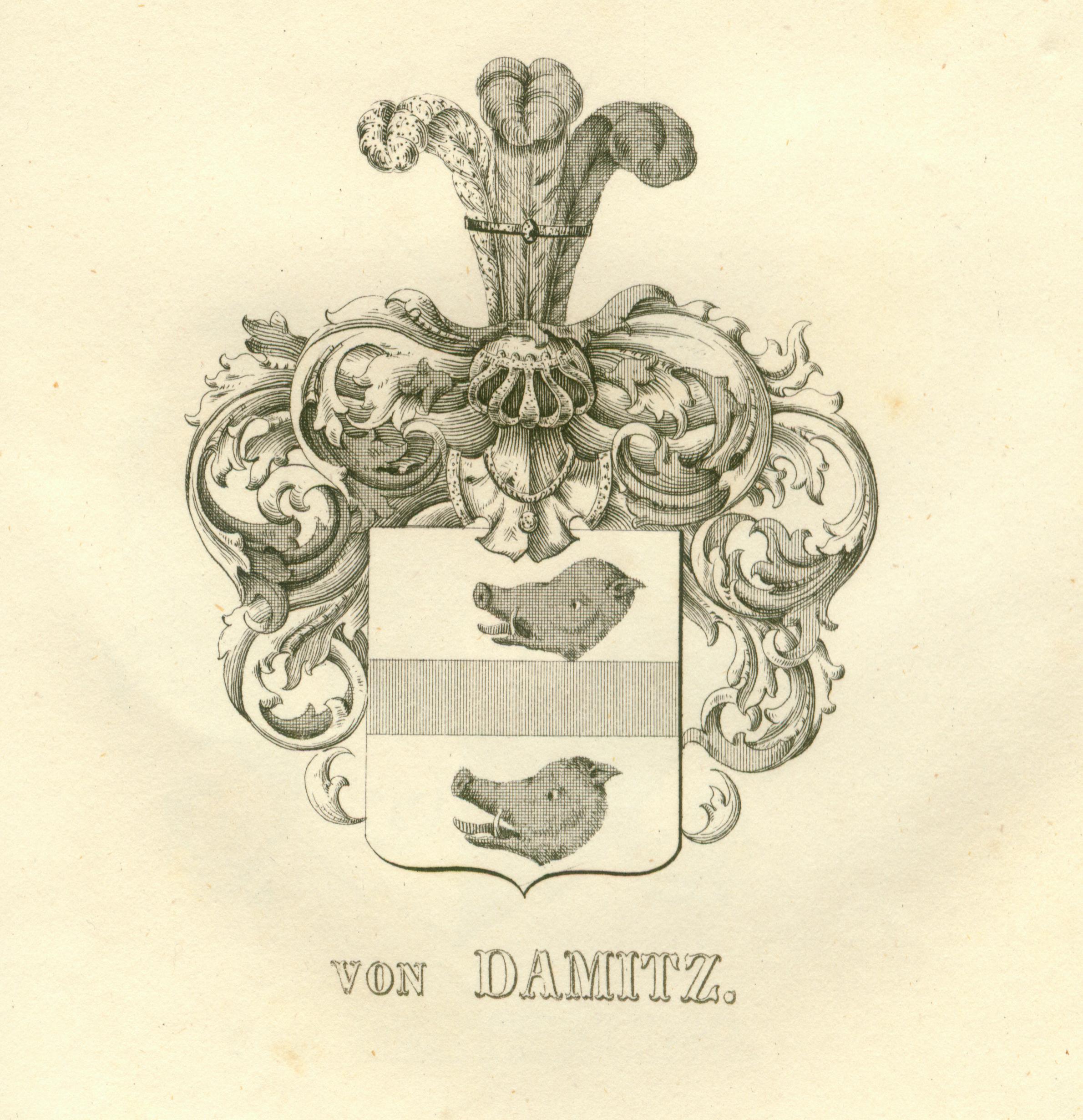 Damitz 1