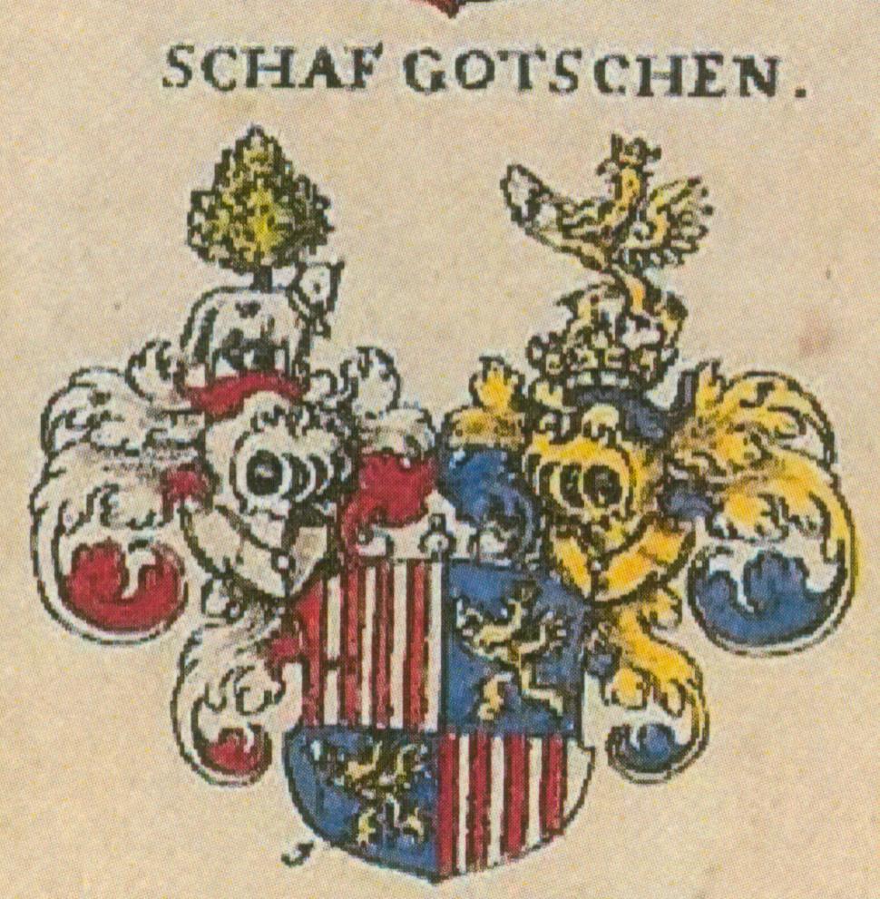 Schawgotsch
