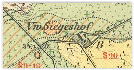 siegeshof-vw-1905-lubuskie