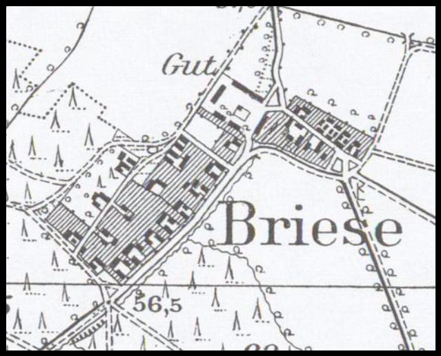 brzezie-1896-lubuskie