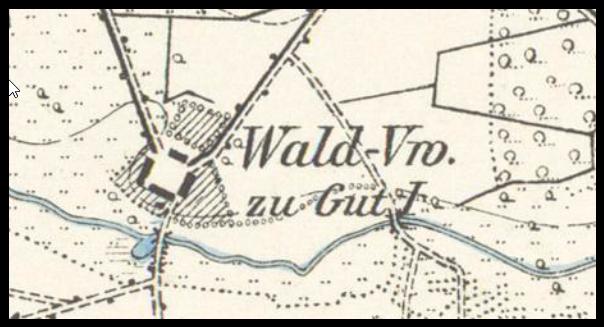 lochowo-wald-vw-1896-lubuskie
