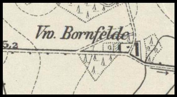 bornfelde-1911-lubuskie